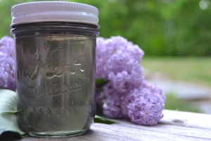 making syrup from lilacs