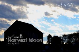 Harvest Moon 2015