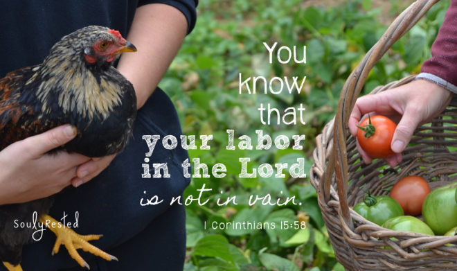 Parents and Teenagers your labor is not in vain