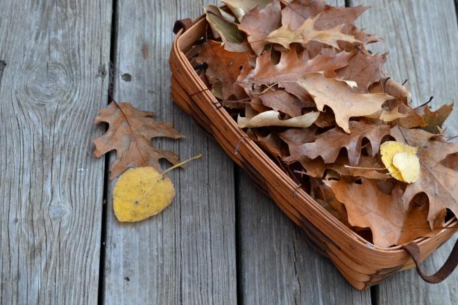 Thankful Tree leaves