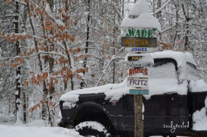 presidential primaries and snow