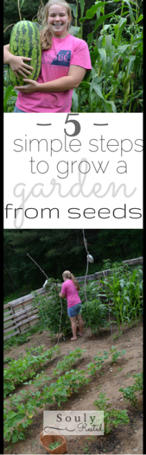 Grow a garden from seeds