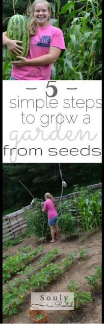 Grow a garden from seeds