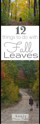 12-things-to-do-with-fall-leaves