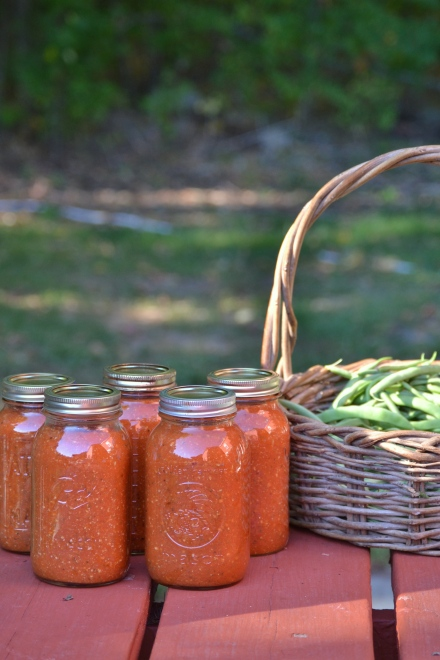 canned tomato sauce and fresh-picked beans