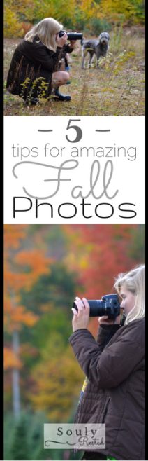 fall-photo-tips